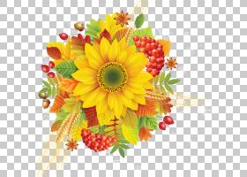 花束画,人造花,花瓣,雏菊家庭,向日葵,水果,非洲菊,花卉,插花,黄