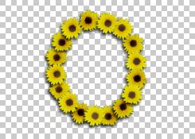 向日葵背景,植物,花,向日葵,黄色,