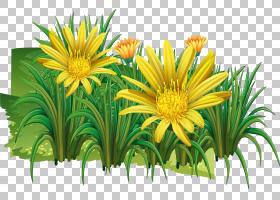 花卉剪贴画背景,花卉,草,插花,雏菊家庭,花盆,花,植物,菊花,海报,