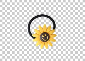 花环,橙色,雏菊家庭,黄色,花瓣,向日葵,植物群,橡皮筋,环,向日葵
