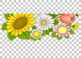 花卉剪贴画背景,花卉,黛西,雏菊家庭,黄色,向日葵,Chamaemelum No