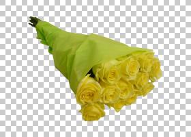 粉红色花卡通,植物,插花,花卉,玫瑰秩序,玫瑰家族,花园,大丽花,粉