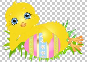 复活节彩蛋卡通,机翼,草,卡通,线路,笑脸,植物,表情,鸟,微笑,叶,