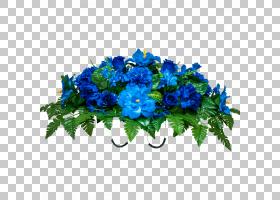 花卉剪贴画背景,草本植物,一年生植物,插花,人造花,海葵,电蓝,花