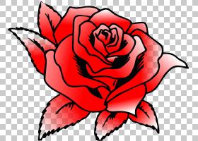 族的图形,切花,玫瑰秩序,黑白,玫瑰家族,杂交茶玫瑰,植物,花瓣,粉