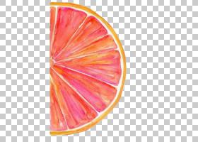 水彩背景,桃子,水果,花瓣,柑橘,山水画,红色,橙色,蓝色,颜色,粉红