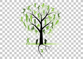 家谱团聚,花卉设计,细枝,植物茎,分支,花,木本植物,树,叶,植物群,