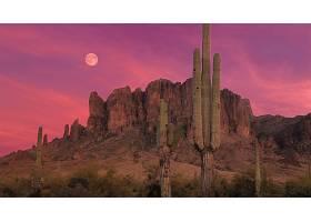 地球,沙漠,风景,山,风景优美的,天空,云,夜晚,月球,仙人掌,壁纸,