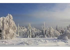 地球,冬天的,壁纸,(236)
