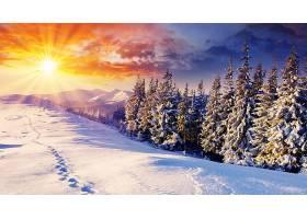 地球,冬天的,壁纸,(99)
