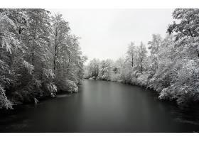 地球,冬天的,雪,季节,河,溪流,森林,树,严寒,壁纸,