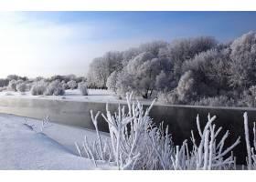 地球,冬天的,雪,溪流,河,森林,严寒,壁纸,