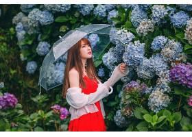 女人,亚洲的,女孩,花,雨伞,妇女,模特,红色,穿衣,黑发女人,绣球花图片