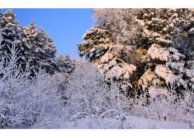 地球,冬天的,壁纸,(361)