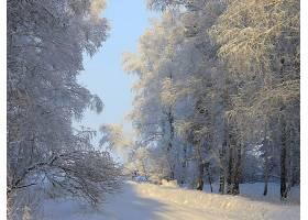 地球,冬天的,壁纸,(415)