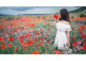 女人,情绪,妇女,模特,女孩,白色,穿衣,黑色,头发,草地,罂粟,红色,