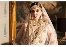 女人,模特,女孩,印度的,莎丽服,珠宝,妇女,口红,项链,耳环,棕色,