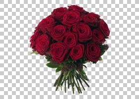 婚恋背景,花卉,插花,蔷薇,花卉设计,玫瑰秩序,玫瑰家族,花园玫瑰,