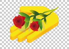 圣诞节和新年背景,矩形,花卉,橙色,花瓣,切花,花卉设计,黄色,植物图片