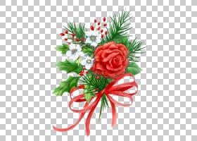 圣诞节和新年背景,花卉,花束,插花,切花,花卉设计,植物,针叶树,花图片