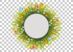 花环,圆,草,花环,装饰,花园,普通雏菊,花园里,洋甘菊,相框,花,草