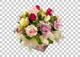 婚恋背景,插花,切花,花瓣,玫瑰秩序,玫瑰家族,花园玫瑰,植物,粉红