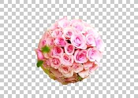 婚恋背景,洋红色,插花,切花,蔷薇,花瓣,玫瑰秩序,玫瑰家族,花园玫