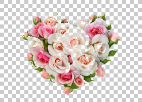 婚恋背景,花卉,插花,切花,蔷薇,花卉设计,玫瑰秩序,玫瑰家族,花园