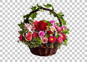 粉红色花卉背景,一年生植物,人造花,礼品篮,蔷薇,粉红色家庭,玫瑰