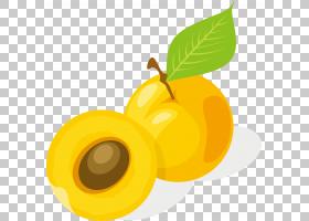 果汁,黄色,食物,植物,喝酒,卡通,Auglis,绘图,水果,杏,苹果,橙色,