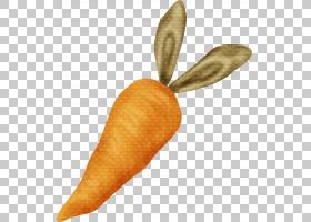 冰淇淋锥形背景,食物,胡萝卜,绘图,冰淇淋蛋卷,橙色,胡萝卜,