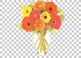 橙色,花卉,插花,橙色,植物,非洲菊,切花,花束,巴伯顿黛西,花,