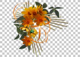 花卉剪贴画背景,花卉,插花,橙色,植物,观赏植物,博客,花瓣,装饰,