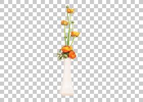 花卉剪贴画背景,花卉,橙色,植物群,插花,花盆,花瓣,人造花,植物,