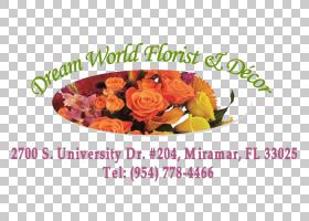 花卉剪贴画背景,食物,花卉,插花,橙色,水果,花瓣,玫瑰,FTD公司,花
