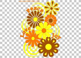 花卉剪贴画背景,野花,花梗,圆,视觉艺术,花瓣,万寿菊,植物,花,橙