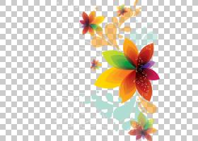 花卉背景,插花,橙色,飞蛾与蝴蝶,植物群,花卉,传粉者,花瓣,蝴蝶,图片