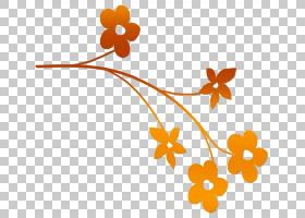 橙花,植物,线路,分支,花瓣,叶,植物群,橙色,植物,免费,Publikado,