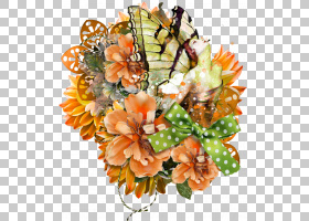 花卉背景,花卉,插花,橙色,大画布,画布,植物,海报,蝴蝶和飞蛾,苹