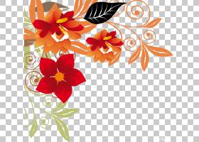 花卉背景,花卉,花束,橙色,插花,花瓣,植物群,植物,光栅图形,想法,