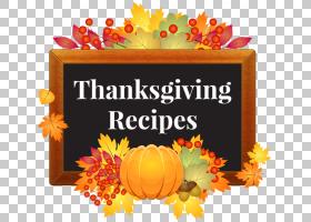 感恩节水果,水果,花,橙色,南瓜,圣诞节,火鸡肉,全国感恩节火鸡介图片
