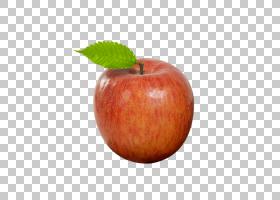 西瓜卡通,麦金托什,梨,西瓜,食物,水果,麦金托什实验室,Auglis,苹