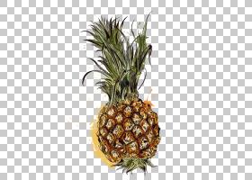 水果背景,花盆,Ananas,食物,植物,安卓,热带,热带水果,猕猴桃,Aug