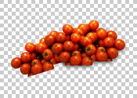 洋葱动画,减肥食品,acerola家族,蔓越橘,浆果,茄科,马铃薯与番茄