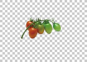 洋葱动画,减肥食品,马铃薯与番茄属,本地食物,天然食品,素食,西红