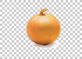 洋葱动画,南瓜属,橙色,壁球,静物摄影,桃子,免费,食物,[医]瘘管葱