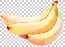 香蕉剪贴画,香蕉家族,食物,葡萄,铅笔,水果,桃子,水墨画,彩色铅笔
