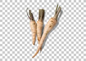 创作背景,食物,木材,颜色,维生素,创造性工作,软件,萝卜,蔬菜,防