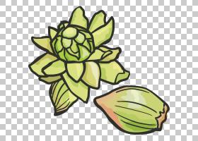 新年设计,线路,植物茎,花卉设计,黄色,树,叶,花,植物,花瓣,年卡,A