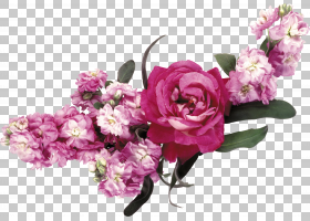 紫色花环,花卉,花束,洋红色,插花,切花,玫瑰家族,花卉设计,花瓣,图片